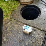 Rat-flap on the ground near drain